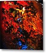 Autumns Looking Glass Metal Print