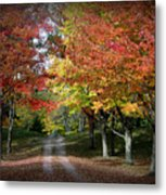 Autumn's Walk Metal Print by Trina Prenzi
