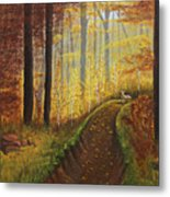 Autumn's Wooded Riverbed Metal Print