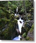 Avalanche Gorge Glacier National Park Metal Print
