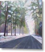Avenue Of The Pines-winter Metal Print