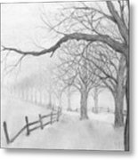 Avenue Of Trees Metal Print