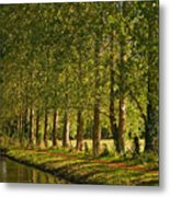 Avenue Of Trees On The Kennet And Avon Canal Metal Print
