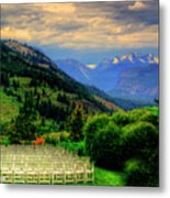 Awaiting The Bride Metal Print by Dale Stillman