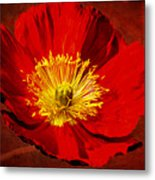 Awake To Red Metal Print