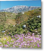 Axarquia In Spring Metal Print