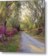 Azalea Lane By H H Photography Of Florida Metal Print