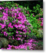 Azalea Waterfall At The Azalea Festival Metal Print