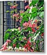 Azaleas At The Window   Metal Print