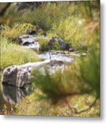 Babbeln Brook Metal Print