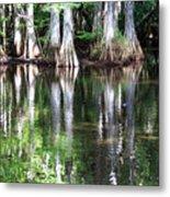 Babcock Wilderness Ranch - Alligator Lake Reflections Metal Print