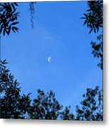 Babcock Wilderness Ranch - Daytime Moon Over Babcock Metal Print