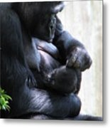 Baby And Momma  Metal Print