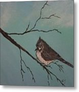 Baby Bird Metal Print by Ginny Youngblood