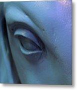 Baby Blue Eyes Metal Print