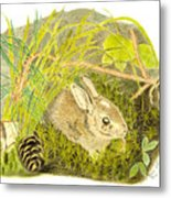 Baby Bunny Down For The Night Metal Print