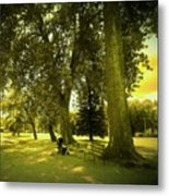Baby Carriage In A Park Metal Print