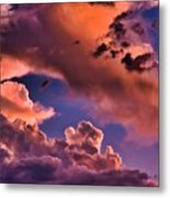 Baby Dragon's Fledgling Flight Metal Print
