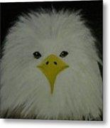 Baby Eagle Metal Print