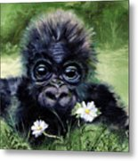 Baby Gorilla With Daisies Metal Print