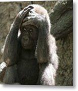 Baby Gorilla1 Metal Print