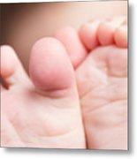 Baby Toes Closeup Metal Print