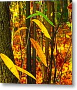 Baby Tree Foliage Metal Print