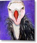 Baby Vulture Metal Print