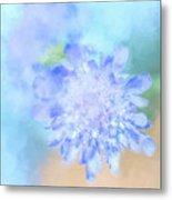 Baby's Breath Metal Print