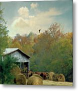 Back At The Barn Again Metal Print by Jan Amiss Photography