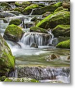 Back Country Stream Metal Print