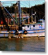 Back From A Long Day At Sea Metal Print