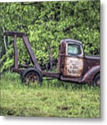 Back In A Field Metal Print