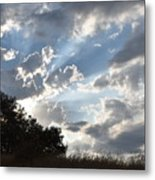 Back Lighting Metal Print