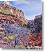 Back Of Zion Metal Print