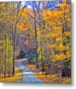 Back Road Fall Foliage Metal Print