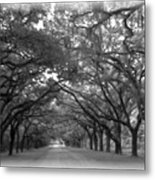 Back Roads Metal Print by Kim Zwick