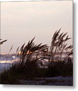 Back To The Shores Metal Print