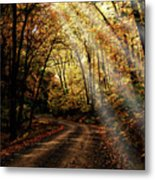 Backcountry Road Metal Print
