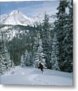 Backcountry Skiing Into An Evergreen Metal Print