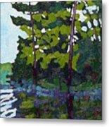 Backlit Pines Metal Print