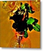 Backlit Roses Metal Print