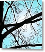 Backlit Tree Metal Print