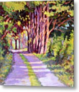 Backroad Canopy Metal Print