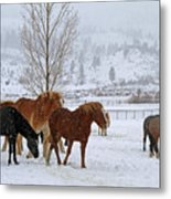 Backs To The Wind Metal Print