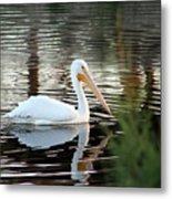 Backwater Serenity Photograph Metal Print