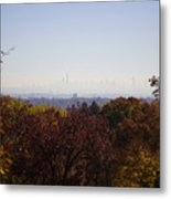 Backyard View Metal Print