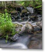Badger Creek #2 Metal Print