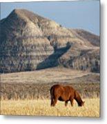 Badlands Canada Saskatchewan Metal Print