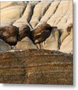 Badlands Drumheller Alberta Canada 4 Metal Print